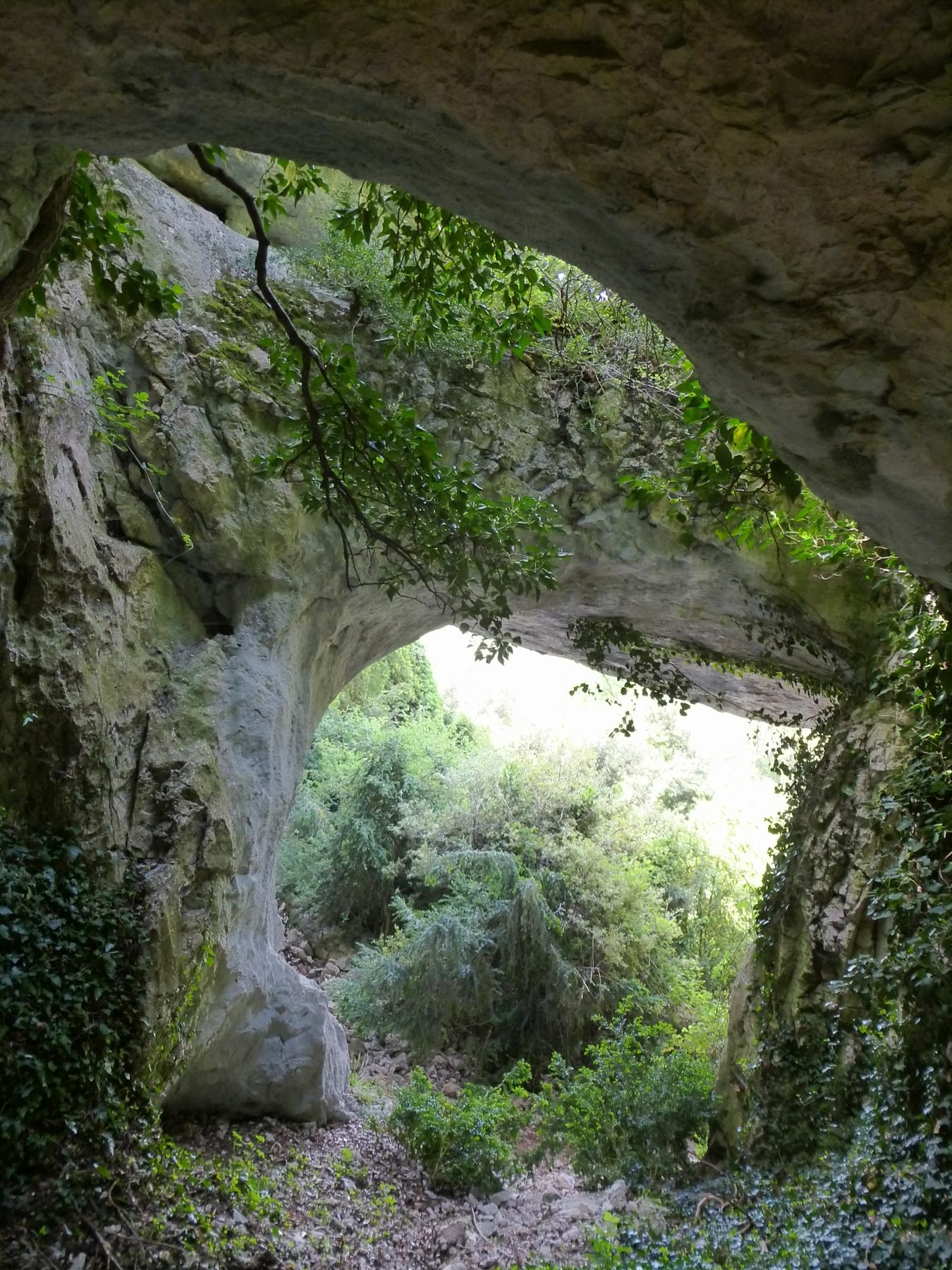 l'arche vaucluse